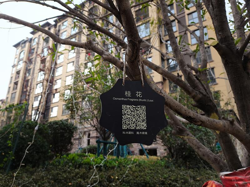 小区户外树名牌